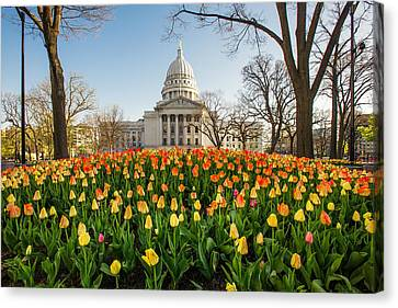 Madison Spring Canvas Print by Todd Klassy