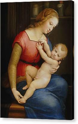 Madonna D'orleans Canvas Print by Raphael