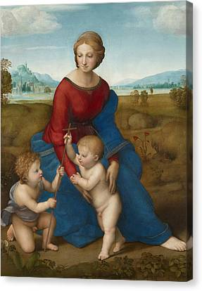 Madonna In The Meadow  Canvas Print by Raphael