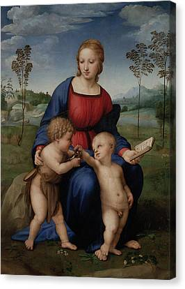 Madonna Of The Goldfinch Canvas Print by Raphael