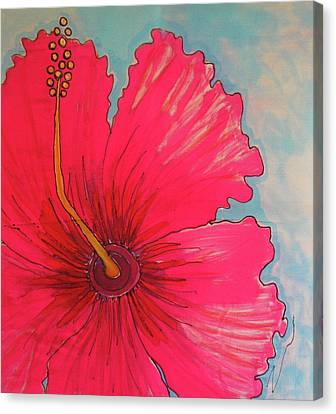 Magenta Hibiscus Canvas Print by Kelly     ZumBerge