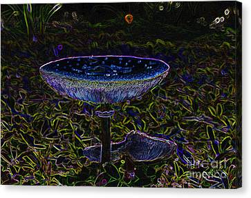 Magic Mushroom Canvas Print by David Lee Thompson