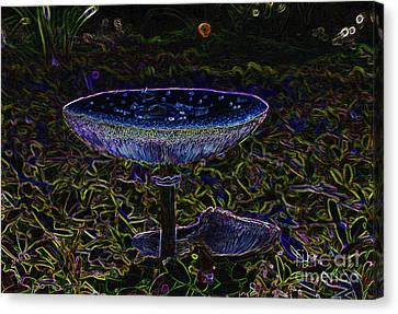 Magic Mushroom Canvas Print by David Lee Thompson
