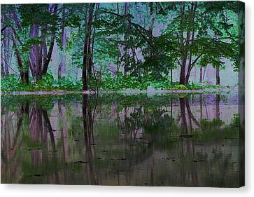 Magical Forest Canvas Print by Karol Livote