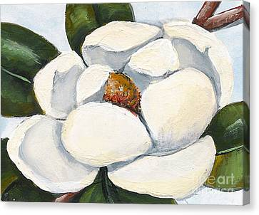 Magnolia On Blue Canvas Print by Elaine Hodges