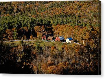 Maine Fall Colors Canvas Print by Gary Cloud