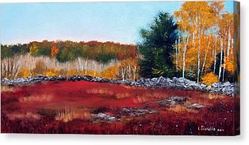 Maine Wild Blueberries Canvas Print by Laura Tasheiko