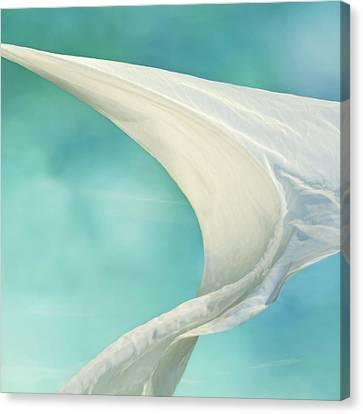 Mainsail 2 Canvas Print by Laura Fasulo