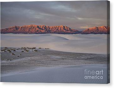 Majestic Morning - White Sands Canvas Print by Sandra Bronstein