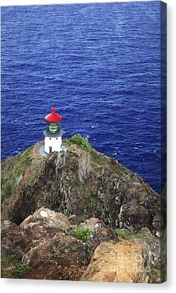 Makapuu Lighthouse II Canvas Print by Brandon Tabiolo - Printscapes