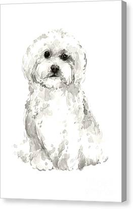 Maltese Abstract Dog Poster Canvas Print by Joanna Szmerdt