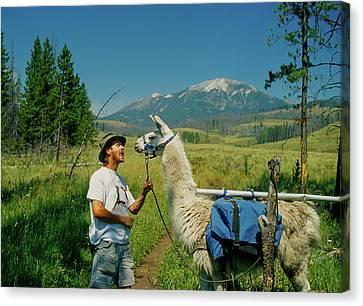 Man Teasing A Llama Canvas Print by Jerry Voss