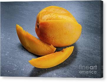Mango And Slices Canvas Print by Elena Elisseeva