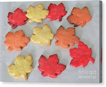 Maple Cookie Leaves Canvas Print by Tracy Hall
