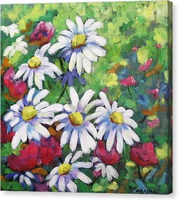 Marguerites 001 Canvas Print by Richard T Pranke