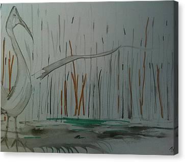Marsh Bird Canvas Print by Jonathan Kotinek