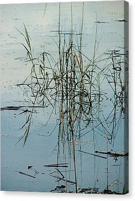 Marsh Grass Canvas Print by Donna Thomas