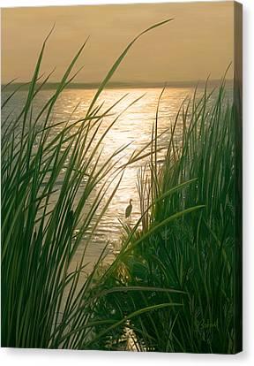 Marsh Sunset Canvas Print by Sue  Brehant