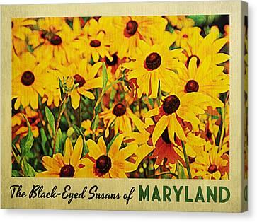 Maryland Black-eyed Susans Canvas Print by Flo Karp
