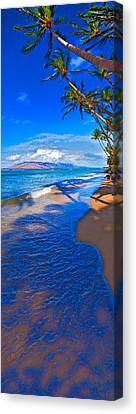 Maui Palms Canvas Print by James Roemmling