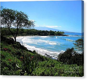 Mauna Kea Beach Canvas Print by Bette Phelan