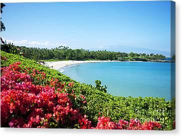 Mauna Kea Beach Canvas Print by Ron Dahlquist - Printscapes