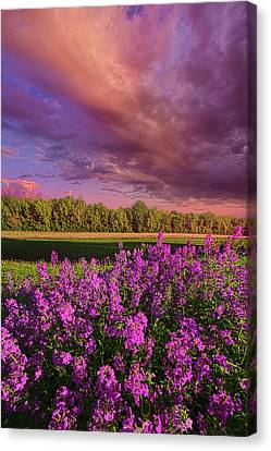 May It Be Canvas Print by Phil Koch