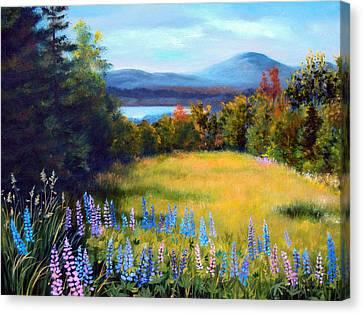 Meadow Lupine II Canvas Print by Laura Tasheiko