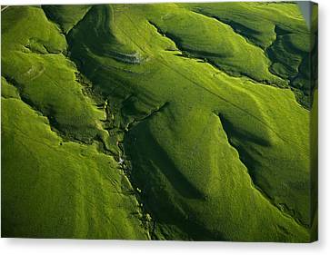 Meandering Valleys Of Texaco Hill Canvas Print by Jim Richardson
