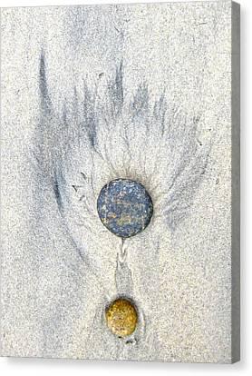 Medallion Canvas Print by Don Ziegler