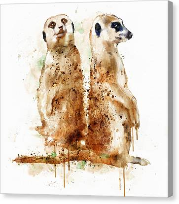 Meerkats Canvas Print by Marian Voicu