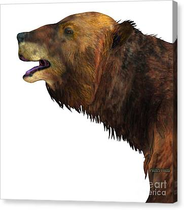 Megatherium Sloth Head Canvas Print by Corey Ford