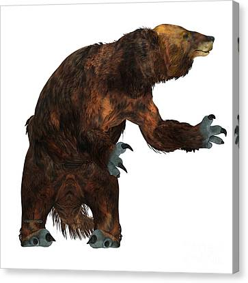 Megatherium Sloth On White Canvas Print by Corey Ford