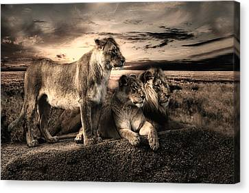 Menage A Trois Canvas Print by Joachim G Pinkawa