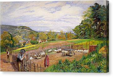 Mending The Sheep Pen Canvas Print by William Henry Millais