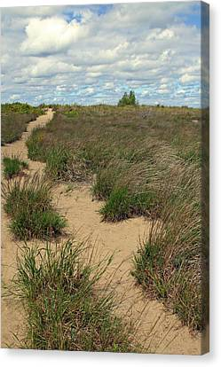 Mentor Headlands Beach Trail Canvas Print by Brian M Lumley