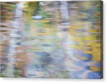 Merced River Reflections 6 Canvas Print by Larry Marshall
