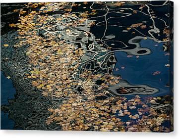 Mesmerizing Autumn - Silky Swirls And Fallen Leaves Five Canvas Print by Georgia Mizuleva