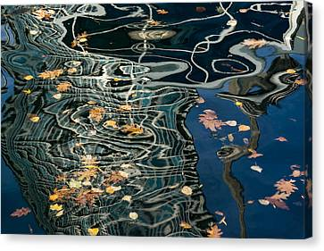 Mesmerizing Autumn - Silky Swirls And Fallen Leaves Two Canvas Print by Georgia Mizuleva