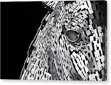 Metal Horse Abstract Canvas Print by Tim Gainey