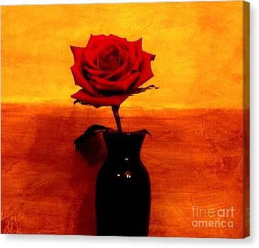 Mexicalli Rose Canvas Print by Marsha Heiken