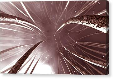 Microscopic Nerve Endings Canvas Print by Allan Swart