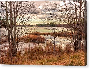 November Afternoon, Annabessacook Lake Canvas Print by Laurie Breton