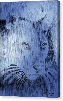 Midnight Blue Canvas Print by Robbi  Musser