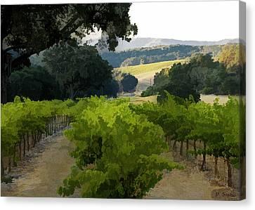 Midnight Cellars Vineyard Canvas Print by Patricia Stalter