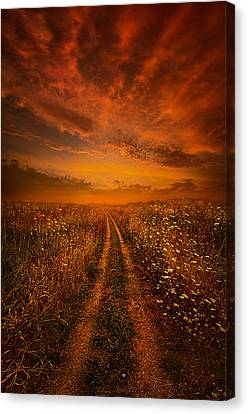 Miles And Miles Away Canvas Print by Phil Koch