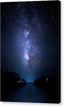 Milky Way And Fireflies Canvas Print by Mark Andrew Thomas
