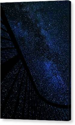 Milky Way Fence Canvas Print by Pelo Blanco Photo
