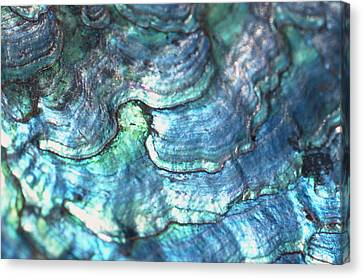 Mineral Canvas Print by John Foxx