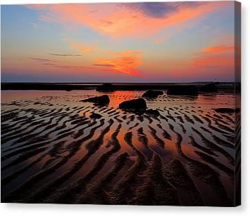 Mirrored Sky Canvas Print by Dianne Cowen